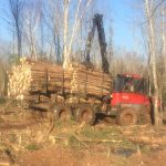 C.D Blue Forestry - Forestry Forwarder