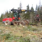 C.D Blue Forestry - Forest Equipment
